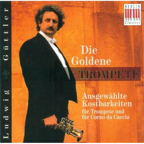 Horn Concerto in D major: I. Allegro moderato