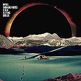 Noel'S High Flying Birds Gallagher: Holy Mountain [Vinyl Single] (Vinyl)