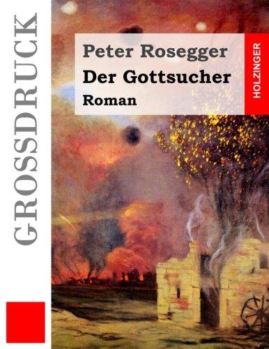 Der Gottsucher (Großdruck): Roman
