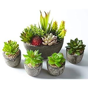 Jobary Set mit 5 künstlichen Sukkulenten mit Töpfen (einschließlich 10 Pflanzen), Bunten und Dekorativen Fälschung…