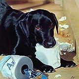 SunsOut 30295 - Bye: Hund im Bad - 500 Teile Quadratpuzzle