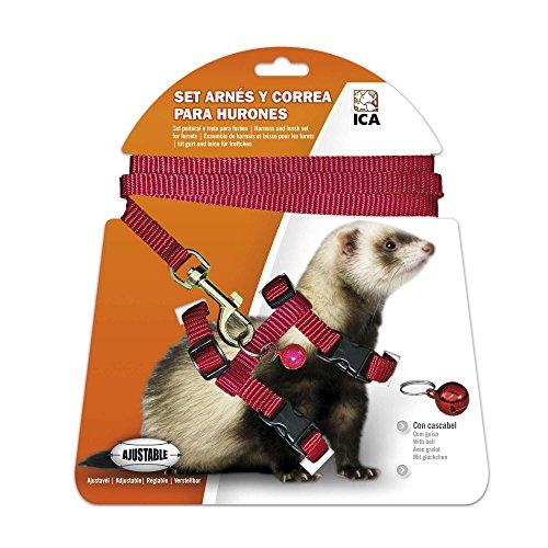 ICA DA970 Set di Imbracatura e guinzaglio per furetti, Rosso
