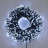 Catena Nastro di Luce 20,5 m, 1000 led bianco freddo, con memory controller, cavo verde, luci decorative, luci natalizie, catena per albero di Natale