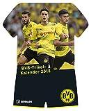 BVB Kalender 2018 - Borussia Dortmund Kalender