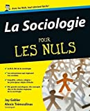 Image de La Sociologie Pour les Nuls