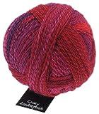 Schoppel-Wolle Zauberball Stärke 6 - indisch Rosa