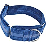 arppe 4170010507 Collar Galgo Regulable Ascott, Azul
