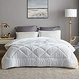 TSWCBYY Winter Home Textile Duvet, Fluffy Wärme Gefüllt Mit Polyester-Hohlfasern, Weiss,200x230cm