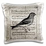 PS Vintage - Vintage Bird with Music Sheet - 16x16 inch Pillow Case (pc_108723_1)
