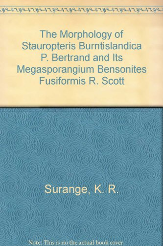 The Morphology of Stauropteris Burntislandica P. Bertrand and Its Megasporangium Bensonites Fusiformis R. Scott