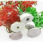 LAAT 10pcs Artificial Aquatic Plant Decoration for Aquarium Plastic Fish Tank Plants Accessories (2) 12