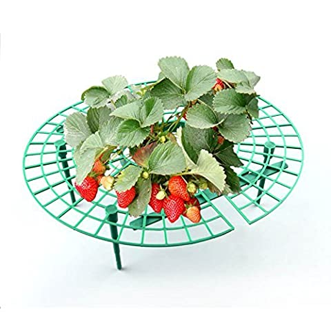 Strawberry Supports,Strawberry Plant Support 6 Pcs,Great for Keeping Fruit Elevated