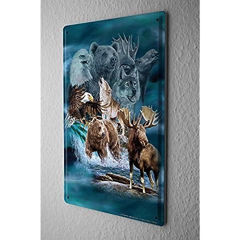 Cartello Targa In Metallo Tin Viaggio Mondo alaska animale Piastra Decorativa 20X30 cm