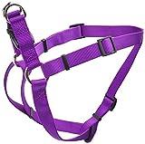 Best Coastal Pet Dog Leash For Large Dogs - Coastal Pet Products DCP6945PUR Nylon Comfort Wrap Adjustable Review