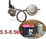 LoGas Conversion Kits für 5,5–6,5kW tragbar Benzin Generator zu verwenden Propan LPG Gas