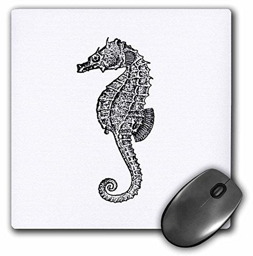 Vintage Schwarz und Weiß, ocean Aquarium Sea Horse–Maus Pad, 8von 20,3cm (MP _ 164955_ 1) (Aquarium Sea Horse)
