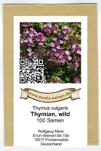 Wilder Thymian - Thymus vulgaris (100 Samen) (Samen Wild-kräuter)