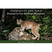 Animals in the Wild: Stunning Up Close & Personal Photographs (English Edition)