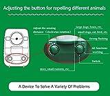 2er-Set AngLink Solar Katzenschreck Ultraschall abwehr mit Batteriebetrieben und Blitz - 8