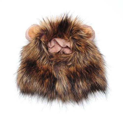 nd Katze Lion Mähne Perücke mit kleinen Ohren Halloween Dress Up (Einfach, Halloween-katze Gesicht)