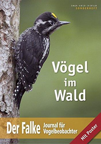 Vögel im Wald: Der Falke - Sonderheft 2012