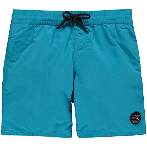 O'Neill Boys' Sunstruck Boardshorts