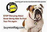 wooftag Abo gratis GPS Hund Standort Finder