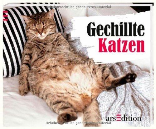 Gechillte Katzen von Paulus Vennebusch (8. August 2014) Gebundene Ausgabe