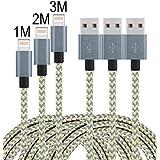 iPhone Kabel, Leginda 3er Pack (1+2+3)M Lightning Kabel USB Kabel Aufgeladen Lange Kabel für iPhone7,7plus, 6s, 6s plus, 6plus, 6, SE, 5s 5c 5, iPad, iPod (Grau + Gold)