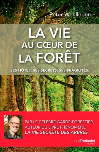 La vie au coeur de la forêt