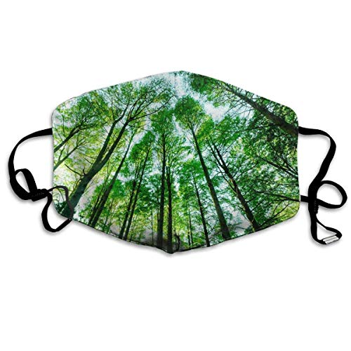 SDGSS Mouth Maske,Landscapes Green Forest Trees Mouth Mask Unisex Dust Facemask Reusable Mask for Men and Women