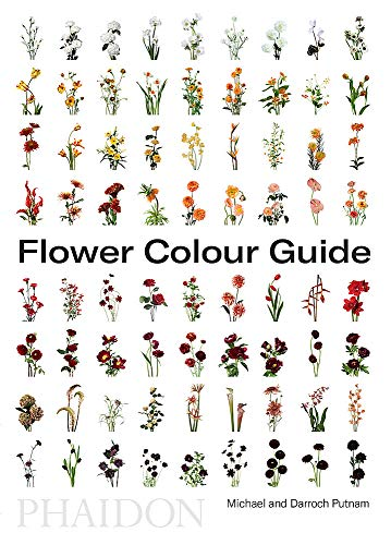 Zoom IMG-1 flower colour guide lingua inglese