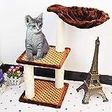 Aoligei Cat Scratching Tree Sommer-Matte mit Katze liefert cool dreistöckigen 32x32x62cm