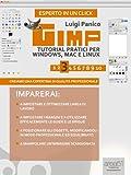 Gimp. Tutorial pratici per Windows, Mac e Linux. Livello 3 (Esperto in un click)