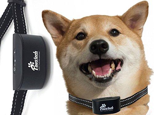 Pawstech Anti Bell Halsband - ohne Zacken oder Elektroschocks. Wiederaufladbar und wasserfest. Für kleine bis mittelgroße Hunde. Inkl. Hundeleinenbefestigung und Lost-Dog-Funktion