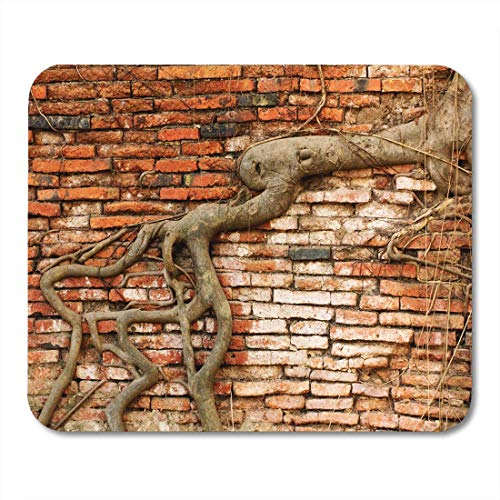 Deglogse Gaming-Mauspad-Matte, Green Growing Tree Root Covering The Old Brick Wall Mouse Pad, Desktop Computers mats