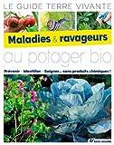Maladies & ravageurs au potager bio : Le guide Terre Vivante