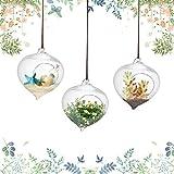 3 Stücke Wassertropfen Form Hängen Hydroponischen Glasvase Blumentopf Sukkulenten Blumentopf mit Seitem Mund für Hausgarten Decor 9,3 X 12 cm