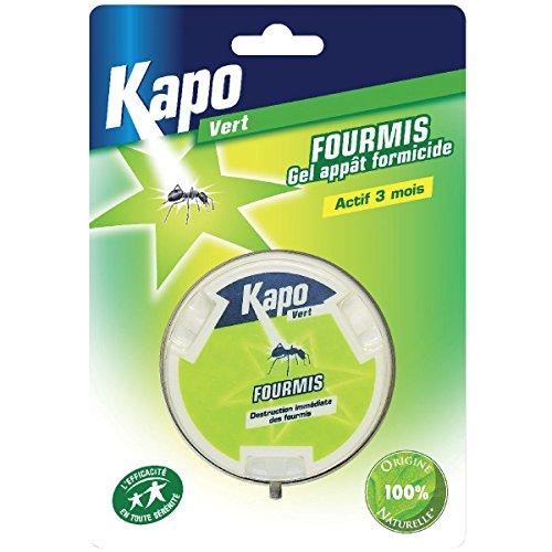 kapo-3128-appat-gel-anti-fourmis-10g-100-naturel-vert