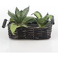 Rettangolare Handmade decorativa in vimini intrecciato per piante con manico 2Large - Basket Weave Planter