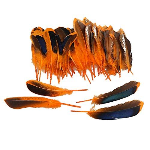 Fenteer 50 pcs Bunte Flügel Federn Ente Federn Feather Schmuckfeder zum Basteln - - Orange Feder Kostüm Flügel