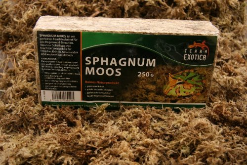 Terra Exotica Sphagnum Moos 250 g