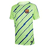 Nike FCB Y NK Dry SQD Top SS GX T-Shirt FC Barcelona für Herren, Grün (Ghost Green/Game Royal), XL