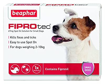 Beaphar FIPROtec Pipette for Extra Large Dog, Pack of 1 from Vital