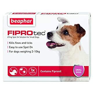 Beaphar FIPROtec Pipette for Extra Large Dog, Pack of 1 Beaphar FIPROtec Pipette for Extra Large Dog, Pack of 1 51fNx61OebL