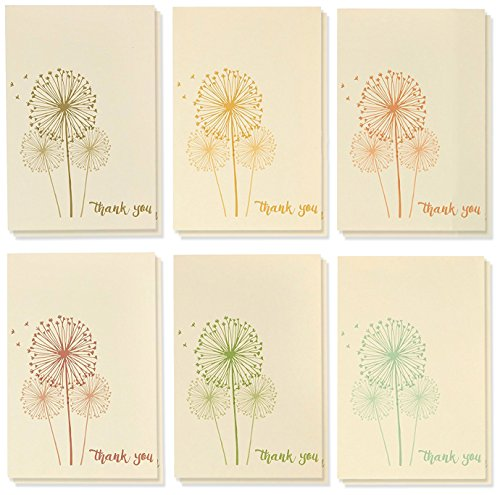 (Best Papier Grüße Thank You–Femininer Löwenzahn Design–Bulk Box Set–Beige/Multicolor–Beinhaltet 48Karten mit Umschlägen–10x 15cm.)