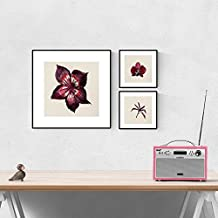 PACK de láminas para enmarcar FLORES ROJAS. Posters cuadrados con imágenes de flores. Decoración de hogar. Láminas para enmarcar. Papel 250 gramos alta calidad