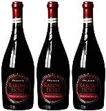 Paladin Raboso Fiore frizzante rosso 2013 trocken (3 x 0.75 l)