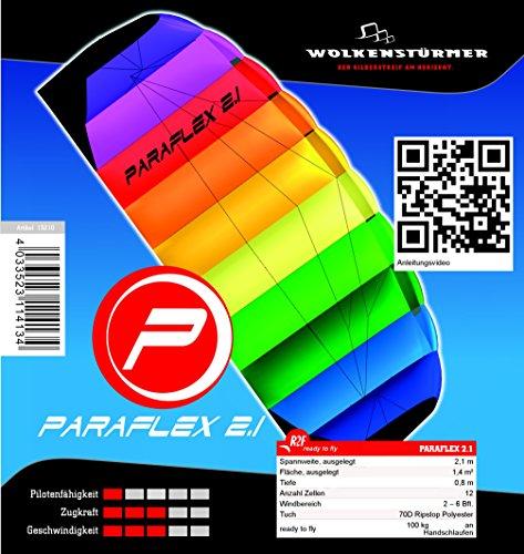 Wolkenstürmer Paraflex Basic 2.1 Lenkmatte, Regenbogen - Flugfertiger 2-Leiner Kite für Anfänger