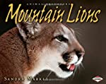 A mountain lion creeps through tall grasses, getting as close as it can to its prey. Suddenly, it springs into action, rushing forward and pouncing on a small deer. The mountain lion uses its claws and teeth to kill the deer, then drags it under a bu...